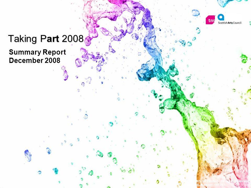 1 Summary Report December 2008 © 2008 TNS UK Limited.