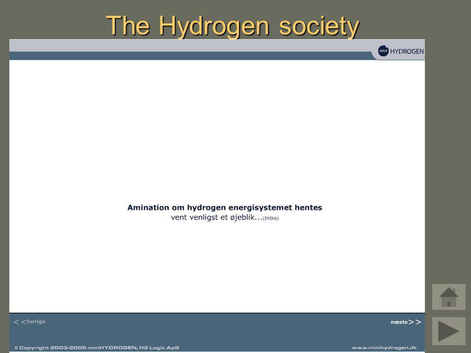 The Hydrogen society