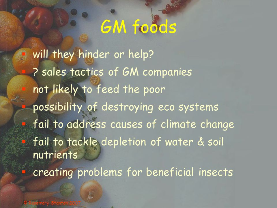 © Rosemary Stanton 2007 GM foods will they hinder or help? ? sales tactics of GM companies not likely to feed the poor possibility of destroying eco s
