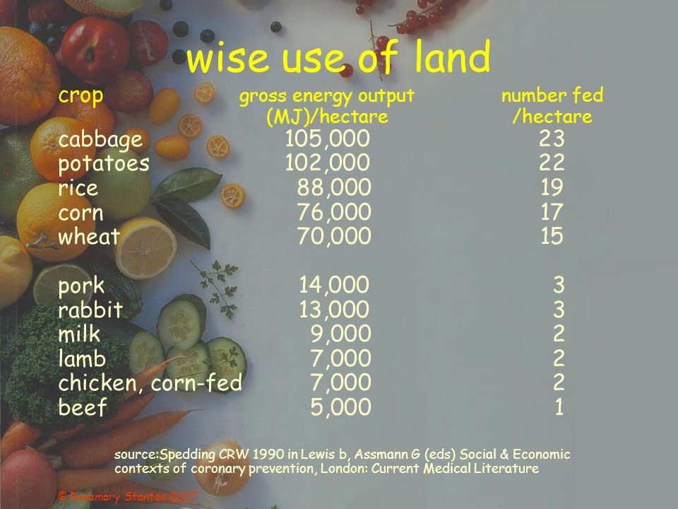 © Rosemary Stanton 2007 wise use of land crop gross energy outputnumber fed (MJ)/hectare/hectare cabbage105,00023 potatoes102,00022 rice 88,00019 corn