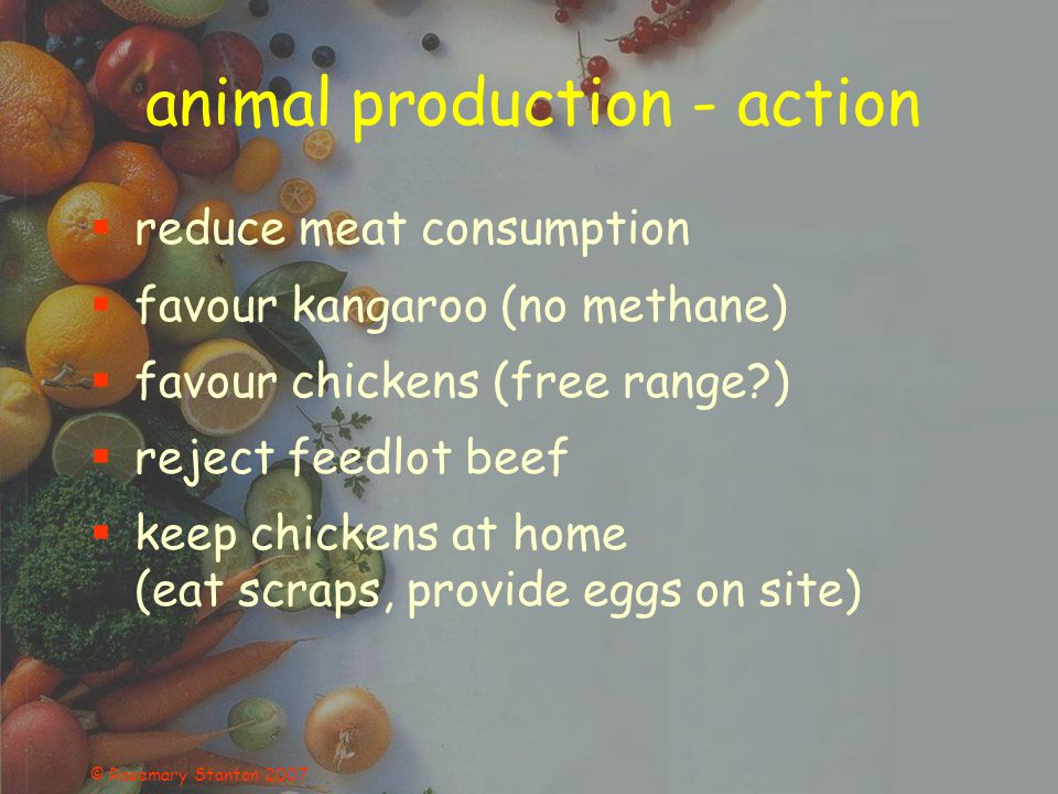 © Rosemary Stanton 2007 animal production - action reduce meat consumption favour kangaroo (no methane) favour chickens (free range?) reject feedlot b