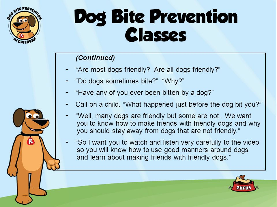 Dog Bite Prevention Classes (Continued) -Are most dogs friendly? Are all dogs friendly? -Do dogs sometimes bite? Why? -Have any of you ever been bitte