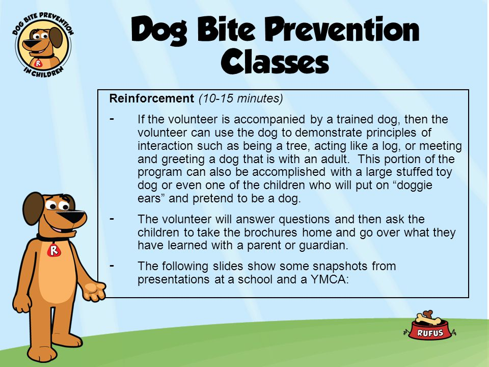 Dog Bite Prevention Classes Reinforcement (10-15 minutes) -If the volunteer is accompanied by a trained dog, then the volunteer can use the dog to dem