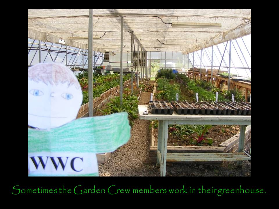 Sometimes the Garden Crew members work in their greenhouse.