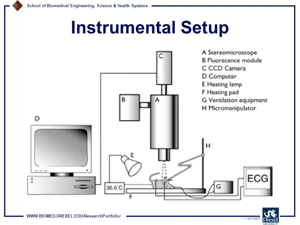 WWW.BIOMED.DREXEL.EDU/ResearchPortfolio/ School of Biomedical Engineering, Science & Health Systems V 1.0 SD [020327] Instrumental Setup