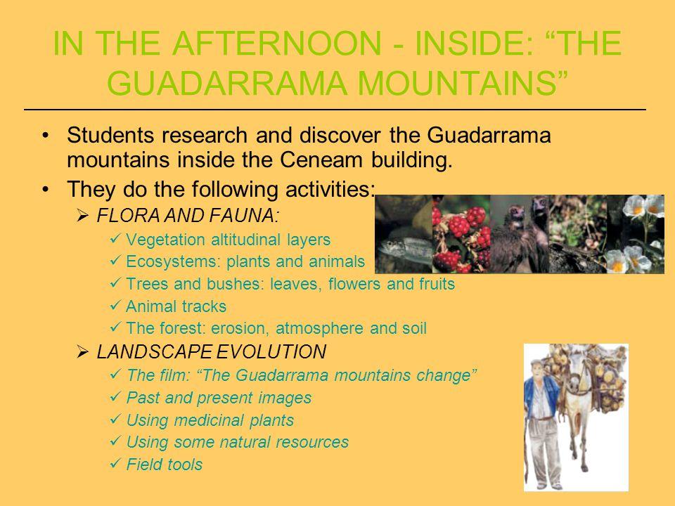THE GUADARRAMA MOUNTAINS