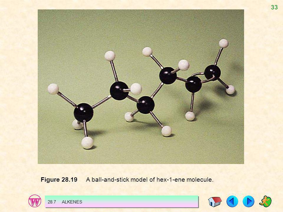 33 Figure 28.19 A ball-and-stick model of hex-1-ene molecule. 28.7 ALKENES