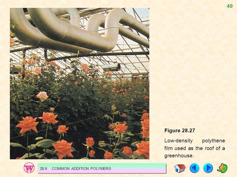 49 Figure 28.27 Low-density polythene film used as the roof of a greenhouse. 28.9 COMMON ADDITION POLYMERS