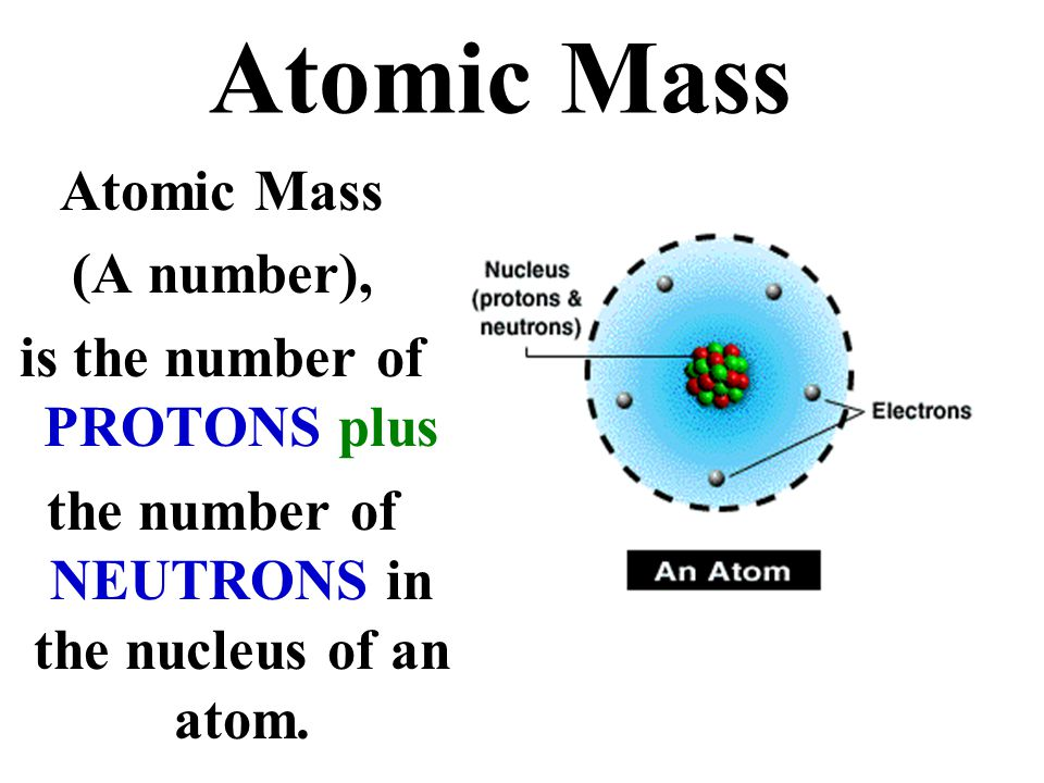 Atomic Mass (A number), is the number of PROTONS plus the number of NEUTRONS in the nucleus of an atom.