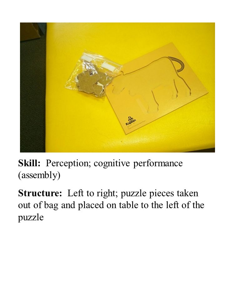 Skill: Perception; cognitive performance (assembly) Structure: Left to right; puzzle pieces taken out of bag and placed on table to the left of the pu