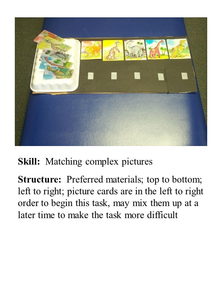 Skill: Matching complex pictures Structure: Preferred materials; top to bottom; left to right; picture cards are in the left to right order to begin this task, may mix them up at a later time to make the task more difficult