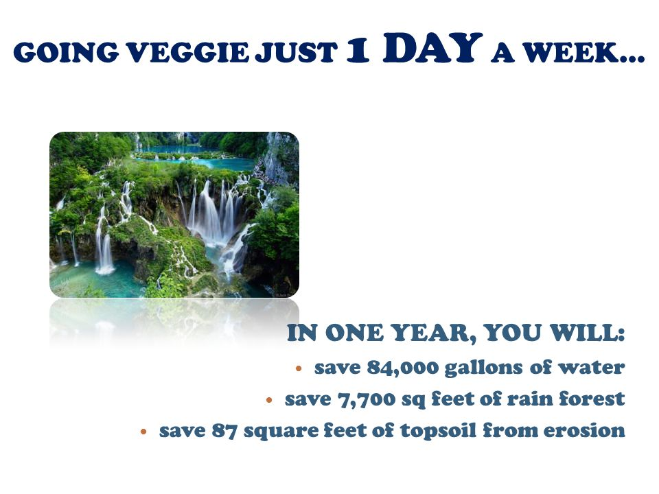 GOING VEGGIE JUST 1 DAY A WEEK… IN ONE YEAR, YOU WILL: save 84,000 gallons of water save 7,700 sq feet of rain forest save 87 square feet of topsoil from erosion