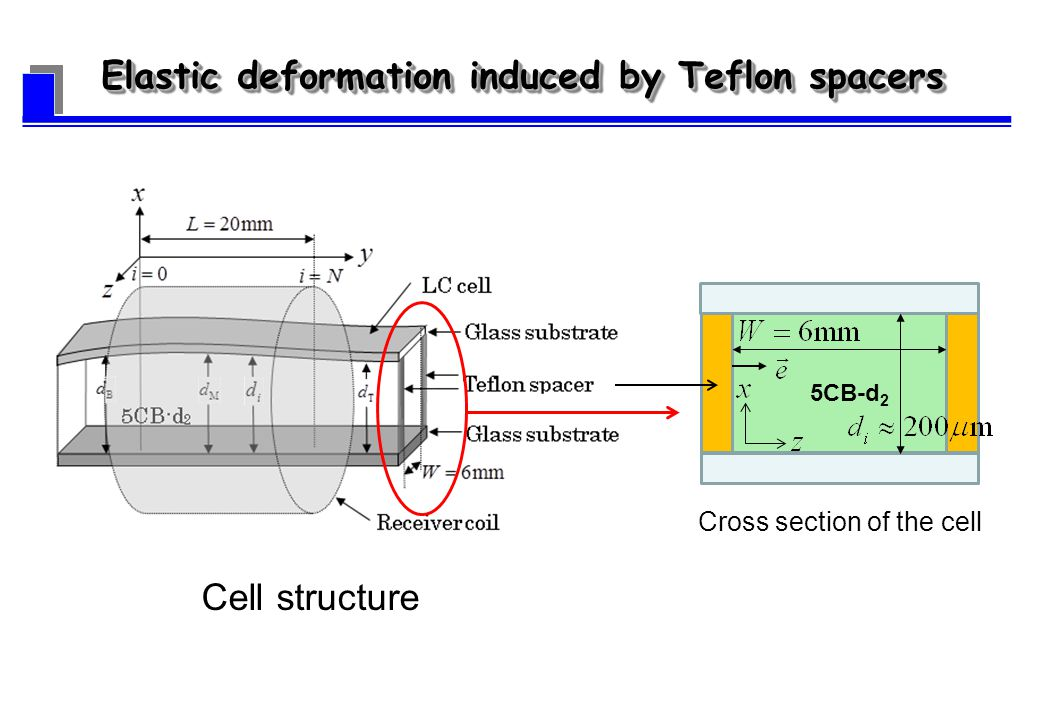 Cell structure Elastic deformation induced by Teflon spacers Cross section of the cell 5CB-d 2