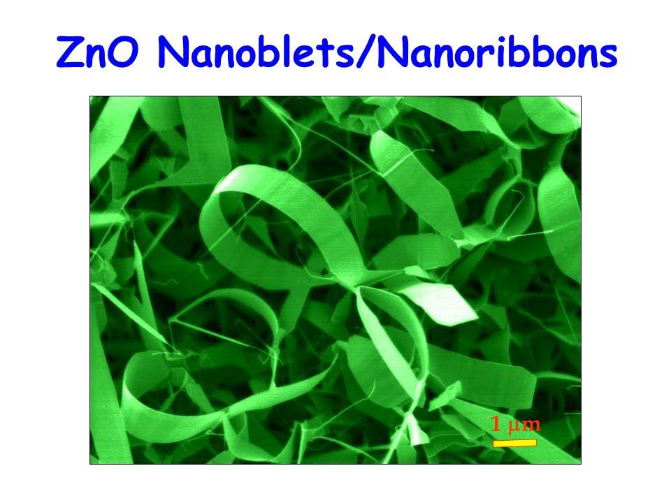 1 m ZnO Nanoblets/Nanoribbons