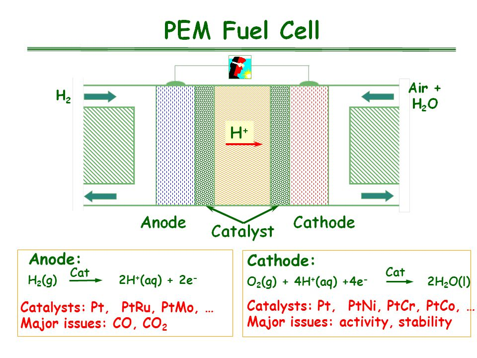 Anode: H 2 (g) 2H + (aq) + 2e - Cat Catalysts: Pt, PtRu, PtMo, … Major issues: CO, CO 2 Cathode: O 2 (g) + 4H + (aq) +4e - 2H 2 O(l) Cat Catalysts: Pt