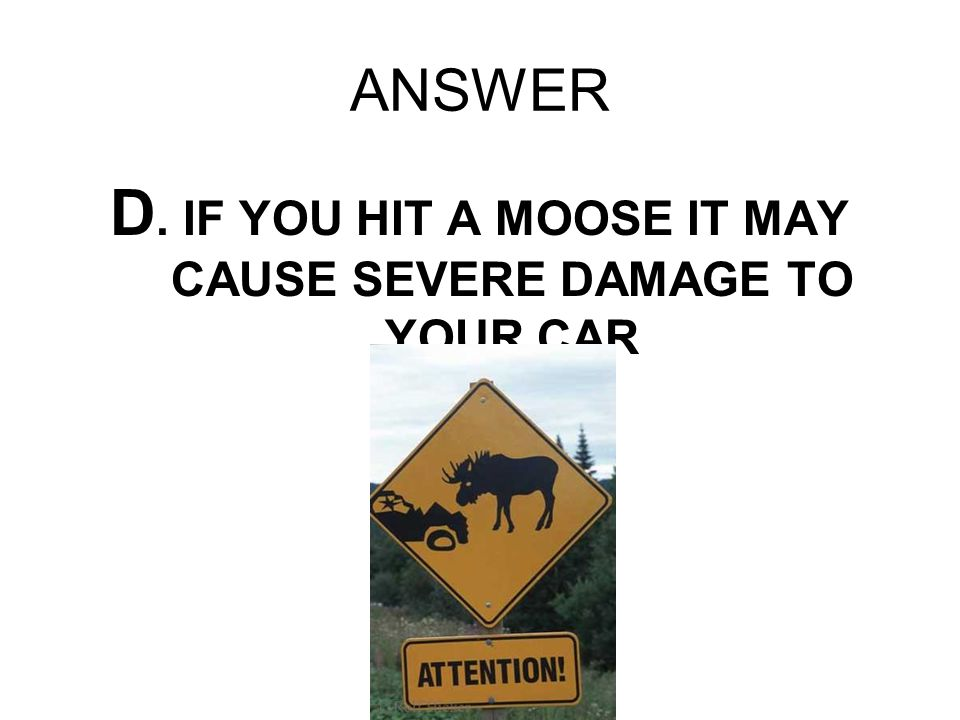 ANSWER D. IF YOU HIT A MOOSE IT MAY CAUSE SEVERE DAMAGE TO YOUR CAR