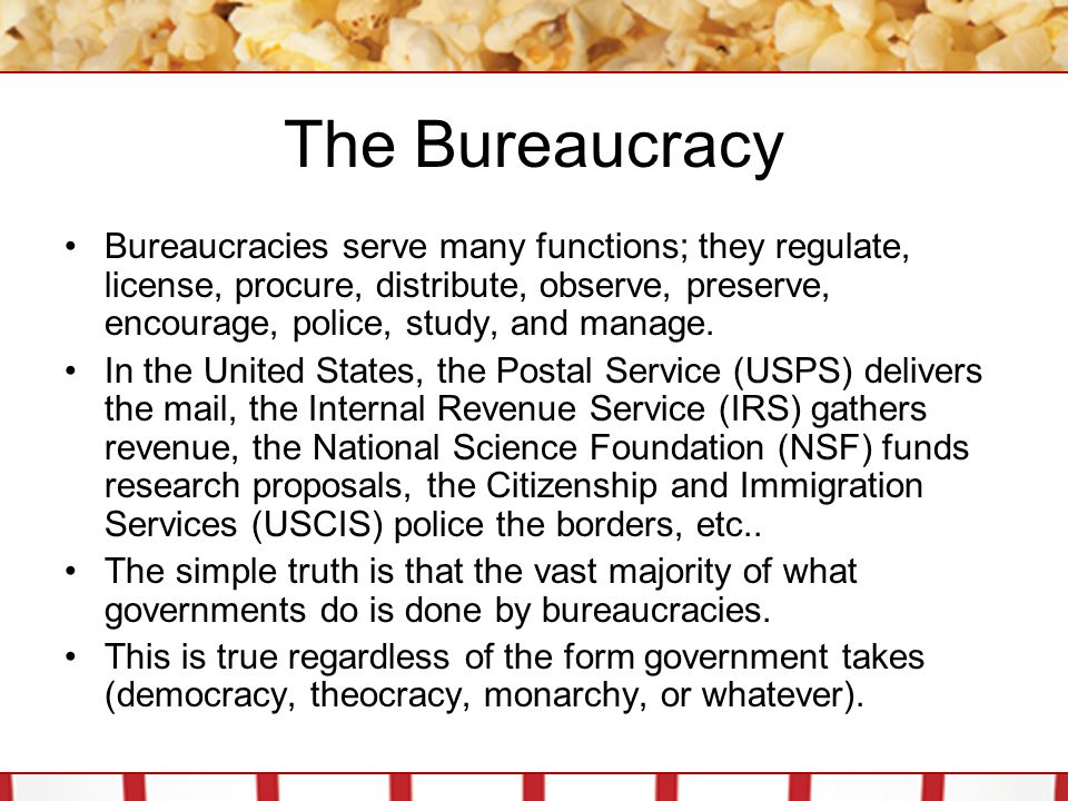 The Bureaucracy Bureaucracies serve many functions; they regulate, license, procure, distribute, observe, preserve, encourage, police, study, and manage.