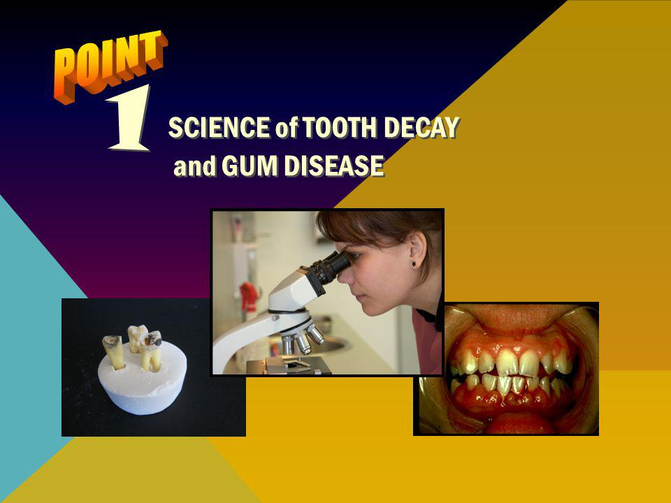 Bacteria are tiny one-celled organisms (germs) found in your saliva (spit) and can only be seen through a microscope Bacteria multiply in your mouth and create a sticky film on your teeth called plaque (plak)