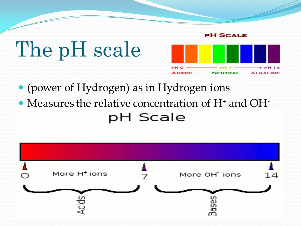 The pH scale (power of Hydrogen) as in Hydrogen ions Measures the relative concentration of H + and OH -