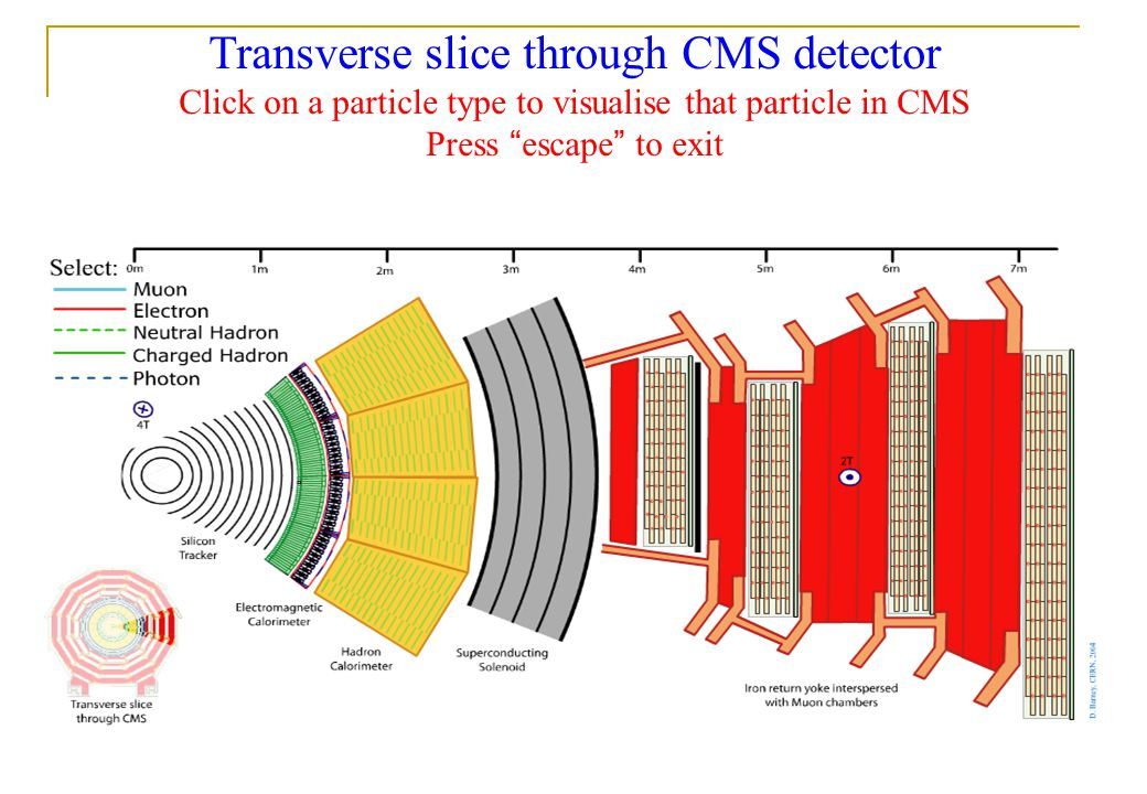 2nd May 2014 Fergus Wilson, RAL 3/31 Transverse slice through CMS detector Click on a particle type to visualise that particle in CMS Press escape to