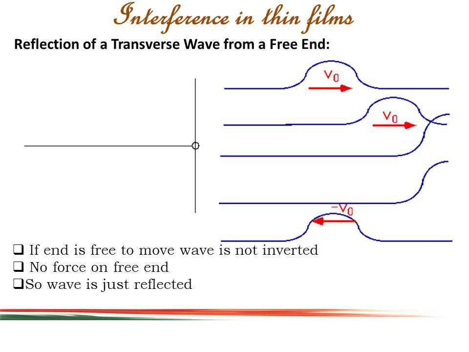 Reflection of a Transverse Wave from a Free End: Interference in thin films If end is free to move wave is not inverted No force on free end So wave is just reflected