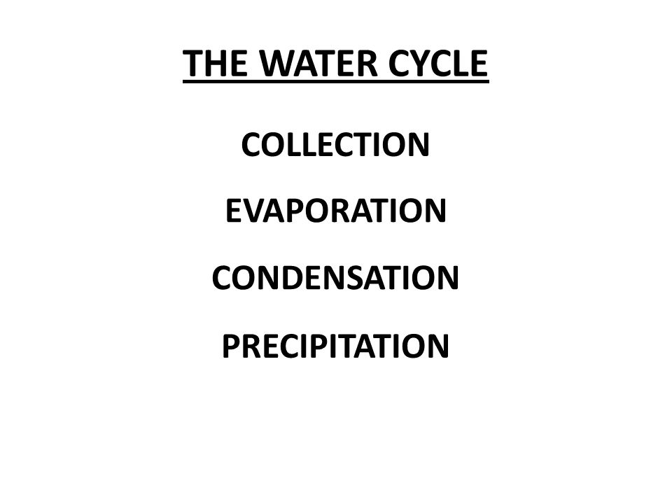 THE WATER CYCLE COLLECTION EVAPORATION CONDENSATION PRECIPITATION