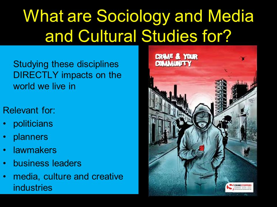 What are Sociology and Media and Cultural Studies for.