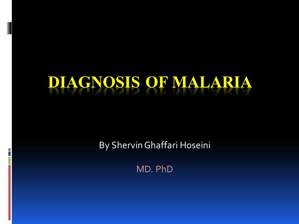 By Shervin Ghaffari Hoseini MD. PhD