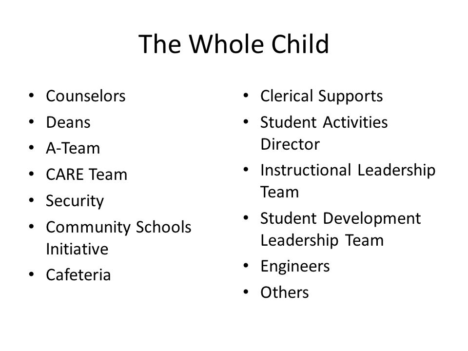 The Whole Child Counselors Deans A-Team CARE Team Security Community Schools Initiative Cafeteria Clerical Supports Student Activities Director Instructional Leadership Team Student Development Leadership Team Engineers Others