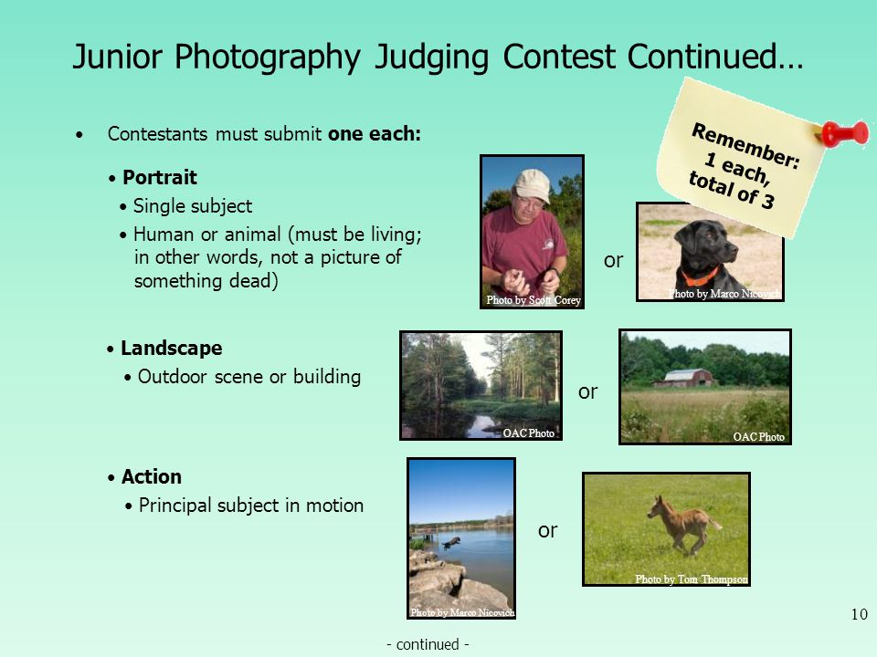 Junior Photography Judging Contest Continued… Contestants must submit one each: 10 - continued - or OAC Photo Landscape Outdoor scene or building or P