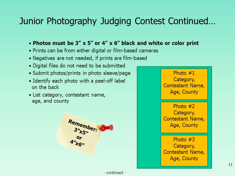 Junior Photography Judging Contest Continued… Photos must be 3 x 5 or 4 x 6 black and white or color print Prints can be from either digital or film-b