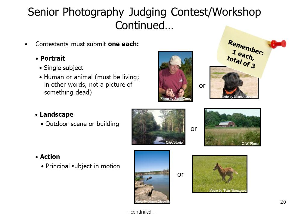 Senior Photography Judging Contest/Workshop Continued… Contestants must submit one each: 20 - continued - or OAC Photo Landscape Outdoor scene or building or Photo by Marco Nicovich Photo by Tom Thompson Action Principal subject in motion or Photo by Scott Corey Photo by Marco Nicovich Portrait Single subject Human or animal (must be living; in other words, not a picture of something dead) Remember: 1 each, total of 3