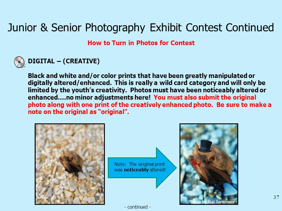 Junior & Senior Photography Exhibit Contest Continued How to Turn in Photos for Contest DIGITAL – (CREATIVE) 37 Black and white and/or color prints that have been greatly manipulated or digitally altered/enhanced.