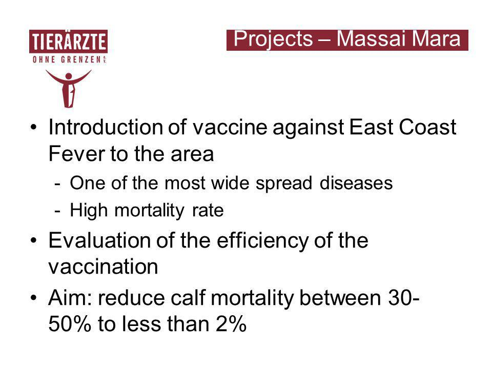 Introduction of vaccine against East Coast Fever to the area -One of the most wide spread diseases -High mortality rate Evaluation of the efficiency of the vaccination Aim: reduce calf mortality between 30- 50% to less than 2% Projects – Massai Mara