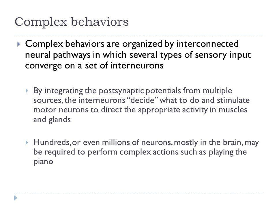 Complex behaviors Complex behaviors are organized by interconnected neural pathways in which several types of sensory input converge on a set of inter