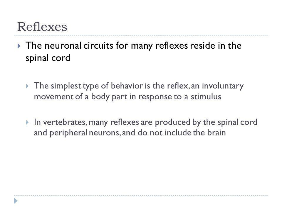 Reflexes The neuronal circuits for many reflexes reside in the spinal cord The simplest type of behavior is the reflex, an involuntary movement of a b
