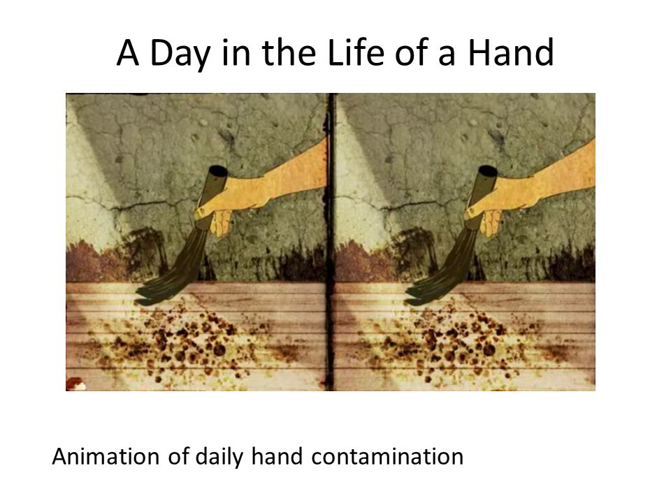 A Day in the Life of a Hand Animation of daily hand contamination