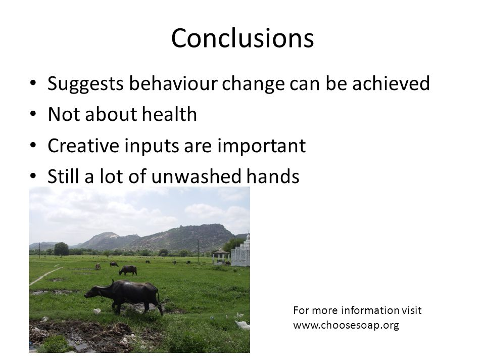 Conclusions Suggests behaviour change can be achieved Not about health Creative inputs are important Still a lot of unwashed hands For more information visit www.choosesoap.org