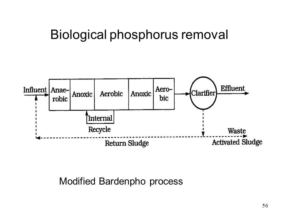 56 Biological phosphorus removal Modified Bardenpho process