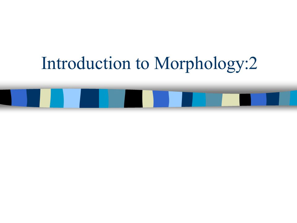 Introduction to Morphology:2