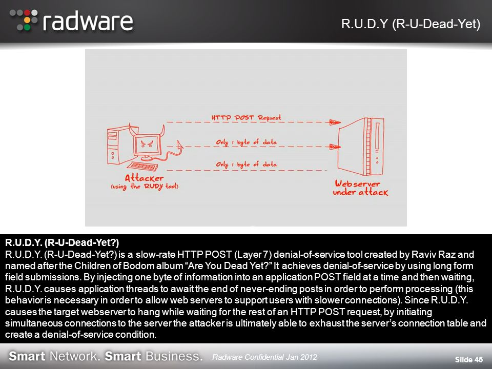 R.U.D.Y (R-U-Dead-Yet) Slide 45 R.U.D.Y. (R-U-Dead-Yet?) R.U.D.Y. (R-U-Dead-Yet?) is a slow-rate HTTP POST (Layer 7) denial-of-service tool created by