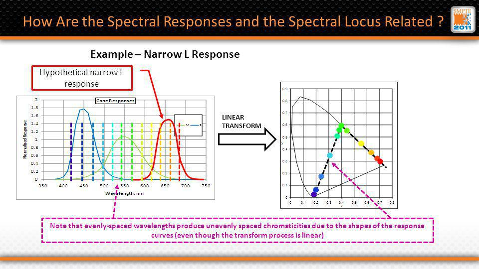 Hypothetical narrow L response How Are the Spectral Responses and the Spectral Locus Related .
