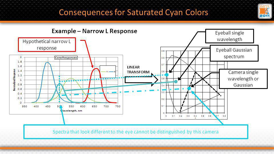 Hypothetical narrow L response Consequences for Saturated Cyan Colors Example – Narrow L Response LINEAR TRANSFORM Spectra that look different to the eye cannot be distinguished by this camera Eyeball single wavelength Eyeball Gaussian spectrum Camera single wavelength or Gaussian