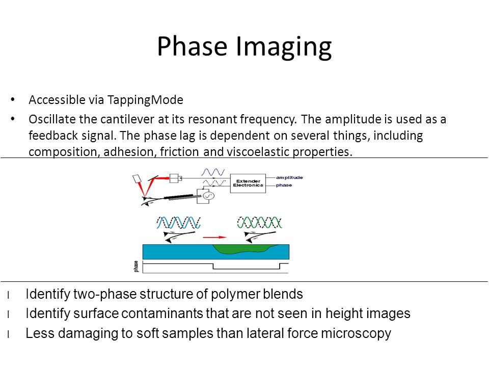 Phase Imaging Accessible via TappingMode Oscillate the cantilever at its resonant frequency. The amplitude is used as a feedback signal. The phase lag