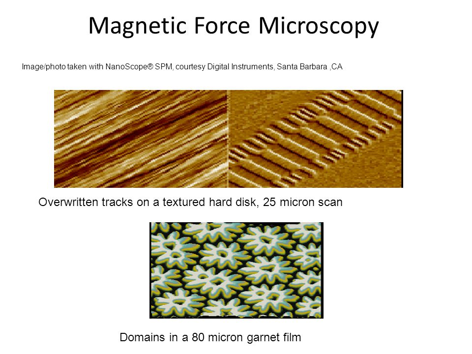 Magnetic Force Microscopy Overwritten tracks on a textured hard disk, 25 micron scan Domains in a 80 micron garnet film Image/photo taken with NanoScope® SPM, courtesy Digital Instruments, Santa Barbara,CA