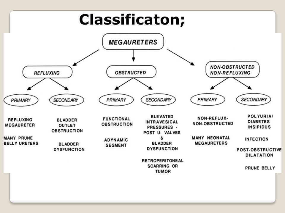 Classificaton;