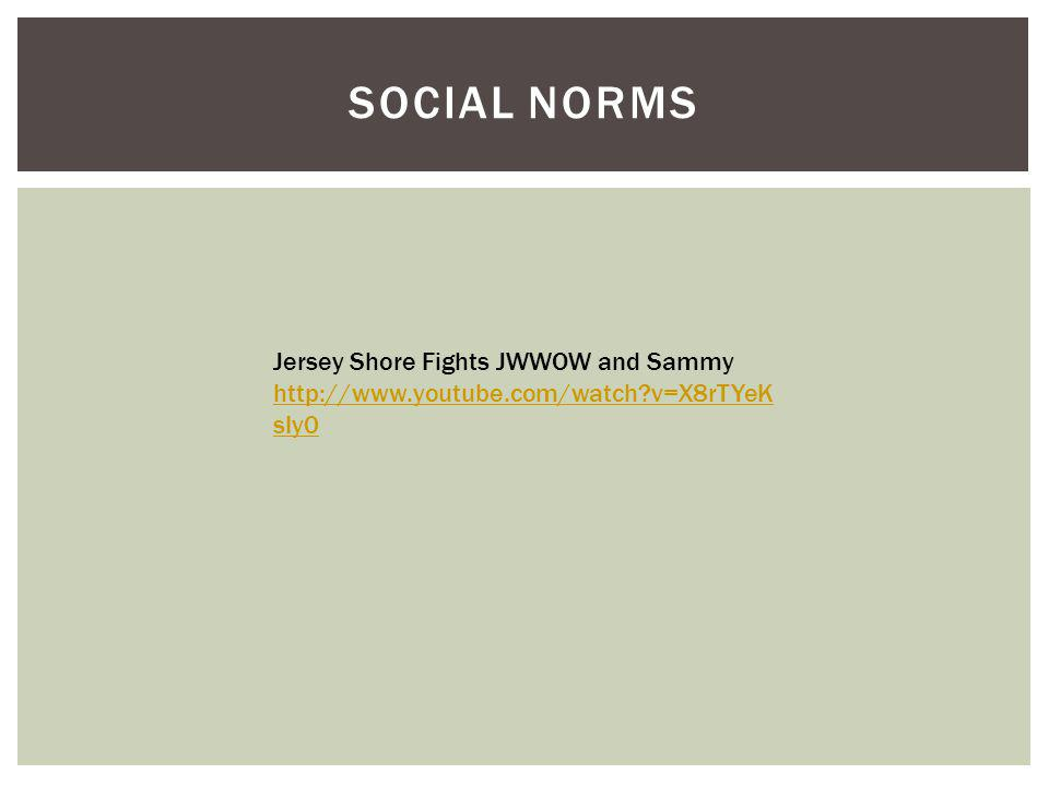 SOCIAL NORMS Jersey Shore Fights JWWOW and Sammy http://www.youtube.com/watch v=X8rTYeK sIy0