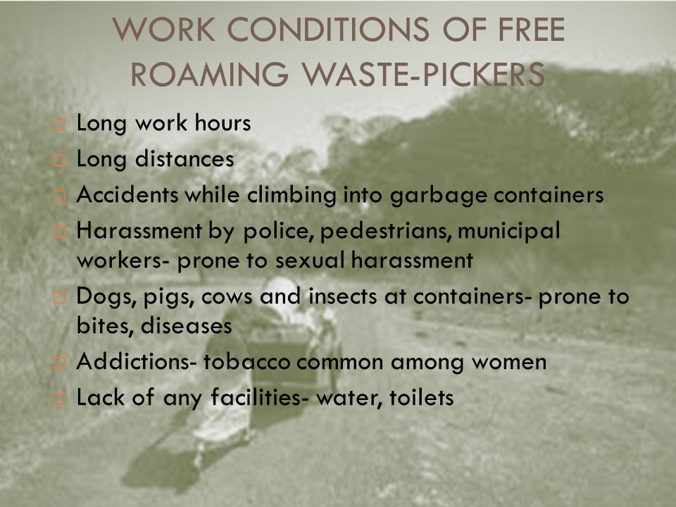 WORK CONDITIONS OF FREE ROAMING WASTE-PICKERS Long work hours Long distances Accidents while climbing into garbage containers Harassment by police, pedestrians, municipal workers- prone to sexual harassment Dogs, pigs, cows and insects at containers- prone to bites, diseases Addictions- tobacco common among women Lack of any facilities- water, toilets