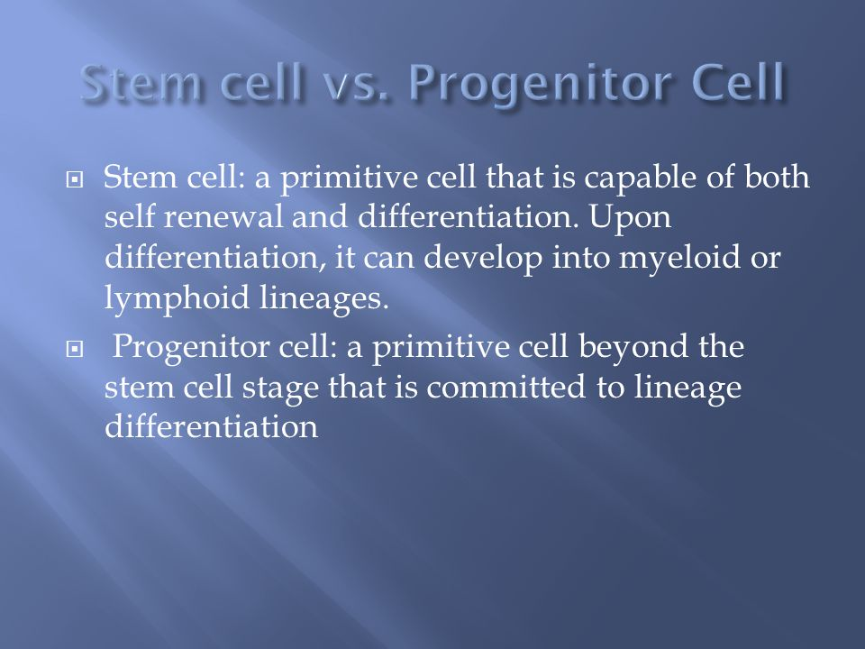 Stem cell: a primitive cell that is capable of both self renewal and differentiation. Upon differentiation, it can develop into myeloid or lymphoid li