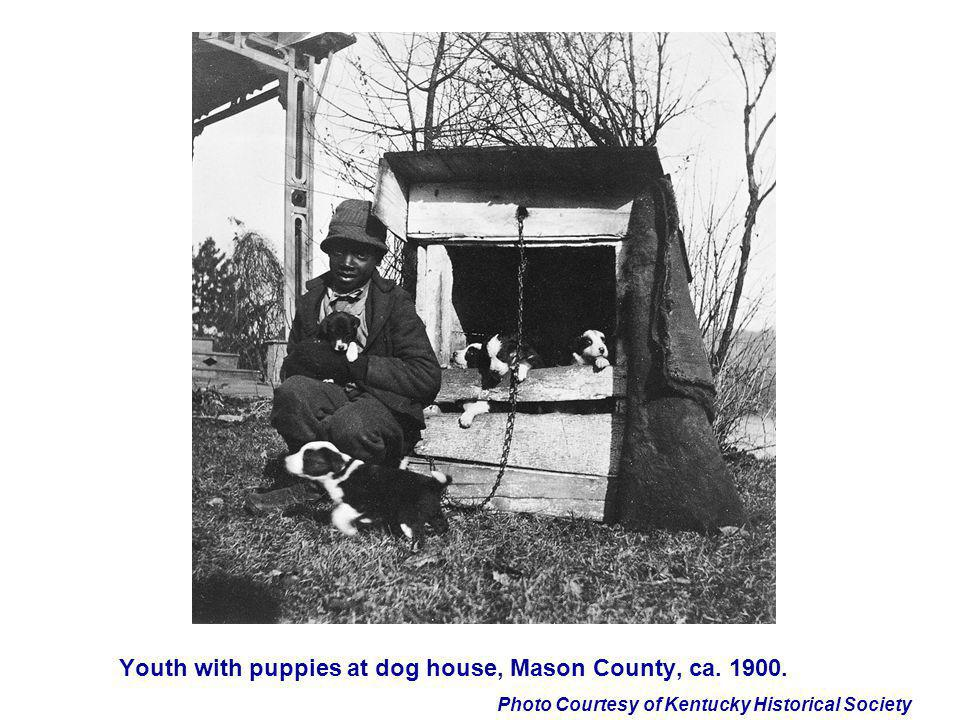 Photo Courtesy of Kentucky Historical Society Youth with puppies at dog house, Mason County, ca. 1900.
